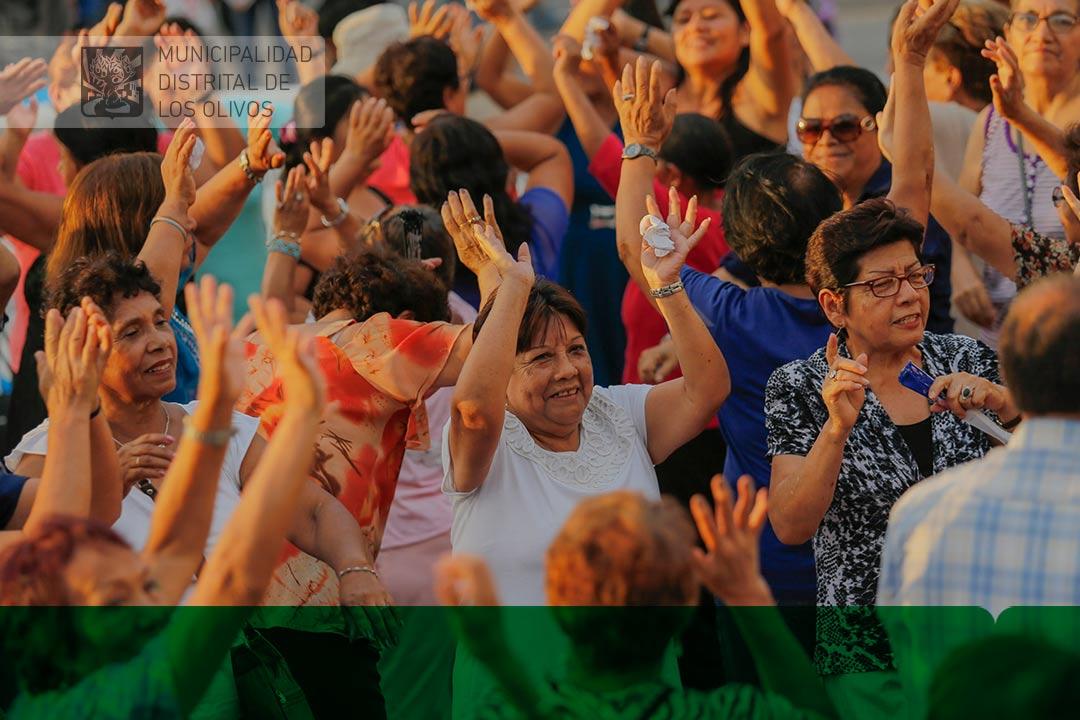 Municipalidad Distrital De Los Olivos Adultos Mayores Celebraron - Celebracion-cumpleaos-adultos